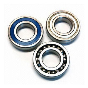 Factory Cat Bearings